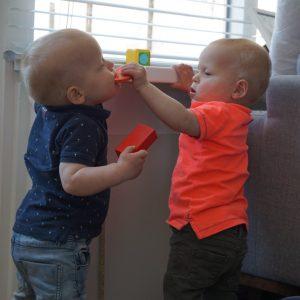 Tweelingbroers